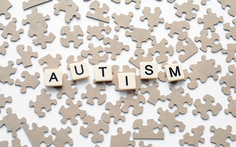 Autism-04